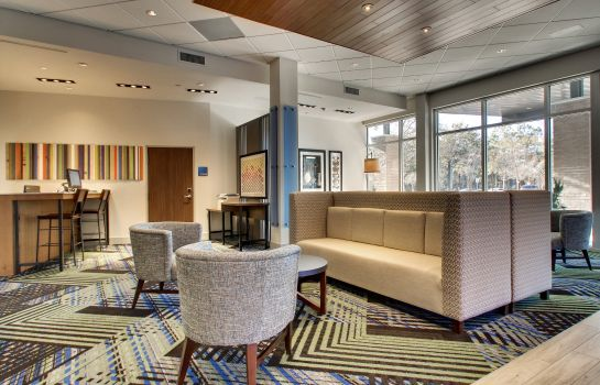 Hol hotelowy Holiday Inn Express & Suites CHARLESTON NE MT PLEASANT US17