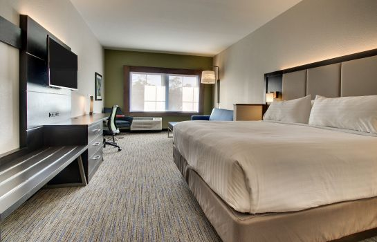 Zimmer Holiday Inn Express & Suites CHARLESTON NE MT PLEASANT US17