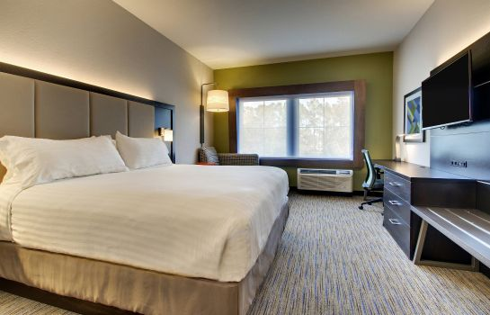 Pokój Holiday Inn Express & Suites CHARLESTON NE MT PLEASANT US17