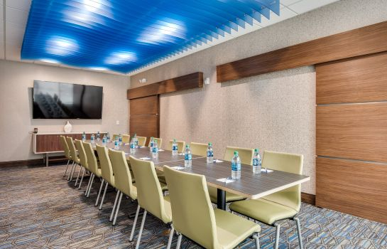 Sala konferencyjna Holiday Inn Express & Suites DALLAS NORTH - ADDISON
