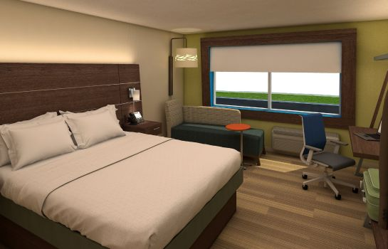 Kamers Holiday Inn Express & Suites DALLAS NORTH - ADDISON