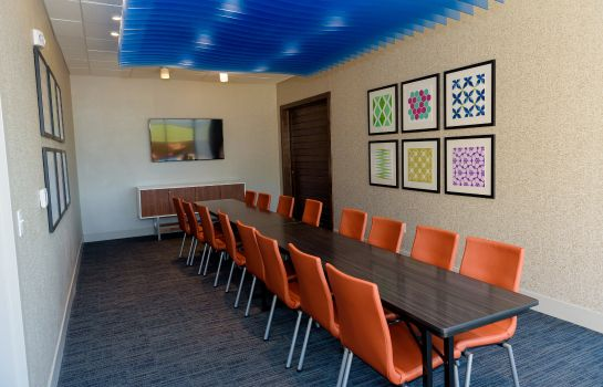 Sala konferencyjna Holiday Inn Express & Suites MCKINNEY - FRISCO EAST