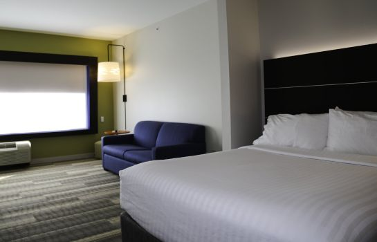 Chambre Holiday Inn Express & Suites KINGSTON-ULSTER