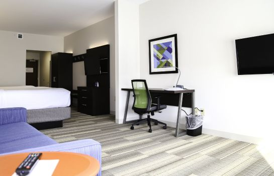 Zimmer Holiday Inn Express & Suites KINGSTON-ULSTER