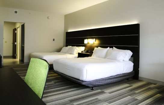 Kamers Holiday Inn Express & Suites KINGSTON-ULSTER
