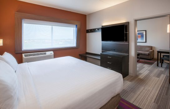 Suite Holiday Inn Express & Suites INDIANAPOLIS NE - NOBLESVILLE