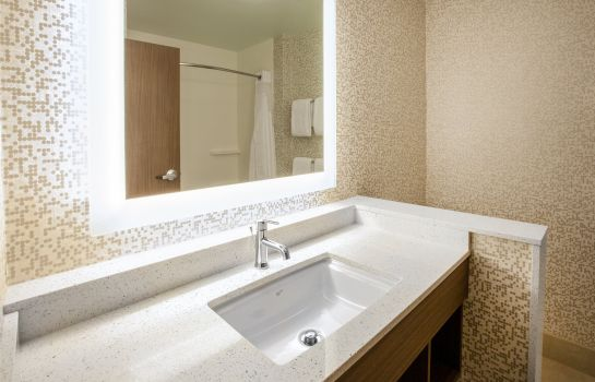 Informacja Holiday Inn Express & Suites INDIANAPOLIS NE - NOBLESVILLE