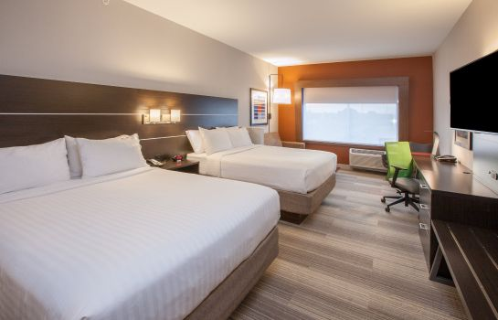 Zimmer Holiday Inn Express & Suites INDIANAPOLIS NE - NOBLESVILLE