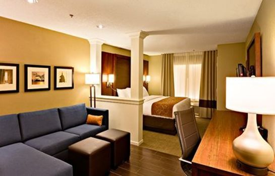 Suite Comfort Suites Dodge City