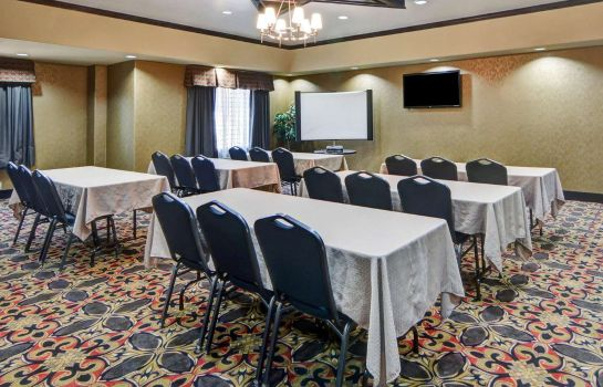 Sala konferencyjna Comfort Suites Fort Worth