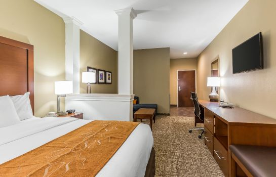 Suite Comfort Suites Houston I-45 North