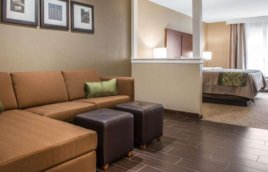 Suite Comfort Inn and Suites Pittsburgh