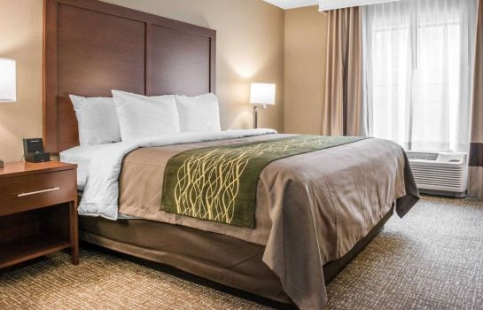 Chambre Comfort Inn & Suites Pittsburgh