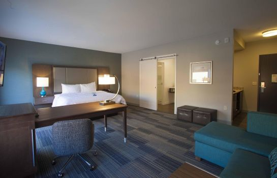 Suite Hampton Inn and Suites by Hilton Downtown St Paul MN