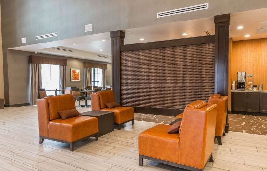Vestíbulo del hotel Comfort Suites Northwest Houston at Belt