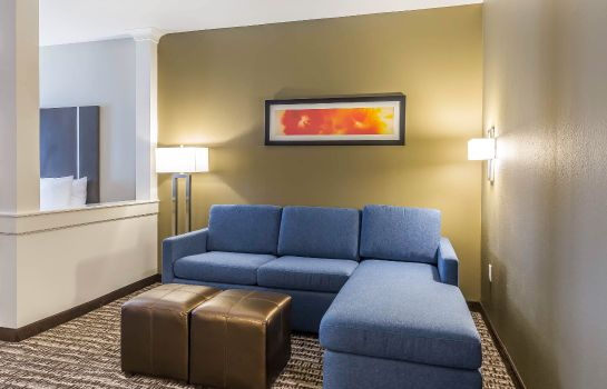 Suite Comfort Suites Northwest Houston at Beltway 8