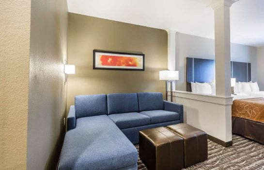 Suite Comfort Suites Northwest Houston at Belt