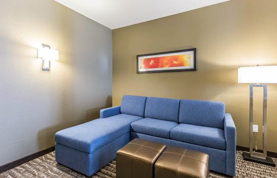 Habitación Comfort Suites Northwest Houston at Belt