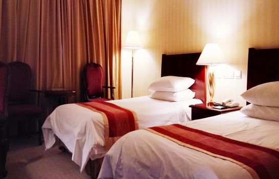 Double room (standard) Binjiang International Hotel