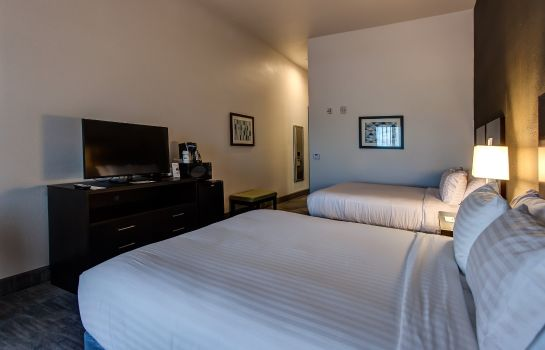 Zimmer Holiday Inn Express & Suites GATESVILLE - N. FT HOOD