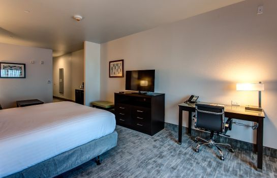 Kamers Holiday Inn Express & Suites GATESVILLE - N. FT HOOD