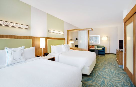 Suite SpringHill Suites Murray