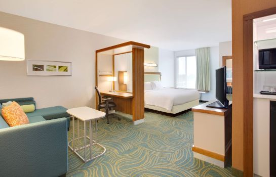 Chambre SpringHill Suites Murray