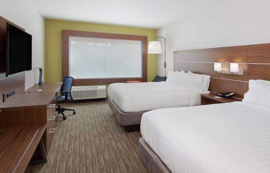 Chambre Holiday Inn Express & Suites CARTERSVILLE
