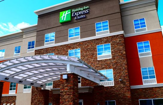 Vista exterior Holiday Inn Express & Suites ITHACA