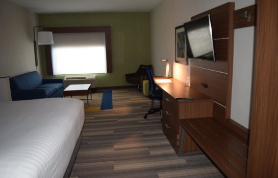 Suite Holiday Inn Express & Suites ITHACA