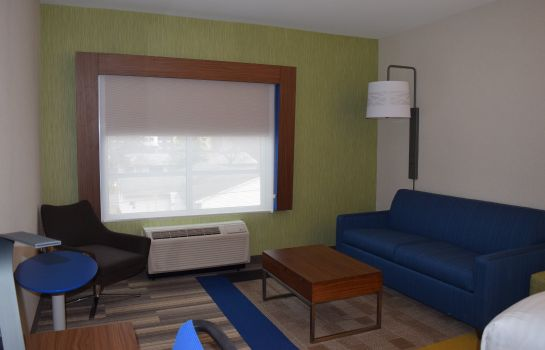 Habitación Holiday Inn Express & Suites ITHACA