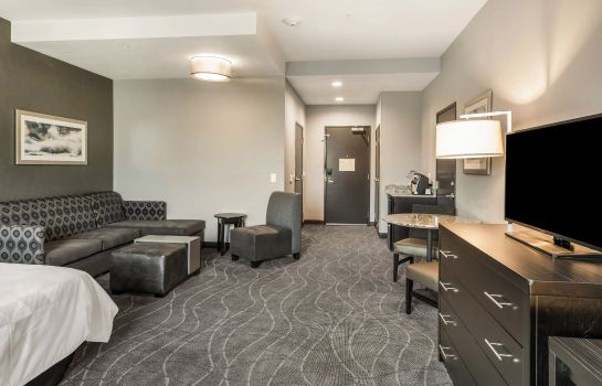Suite Holiday Inn & Suites SILICON VALLEY - MILPITAS