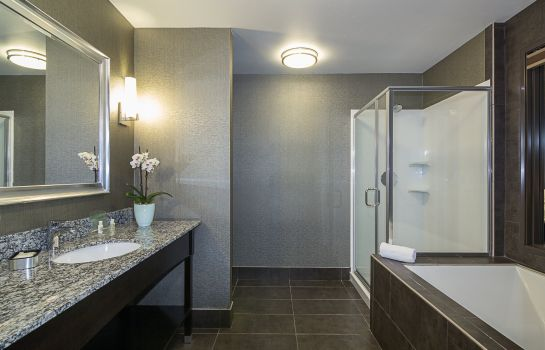 Chambre Holiday Inn & Suites SILICON VALLEY - MILPITAS