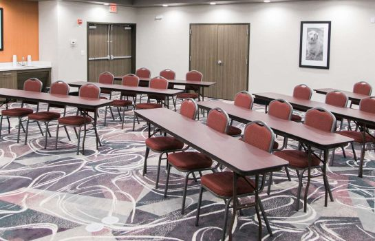 Sala konferencyjna Hampton Inn - Suites Amarillo East