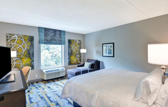 Zimmer Hampton Inn Atlanta Kennesaw GA
