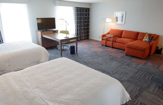 Suite Hampton Inn & Suites Bay City