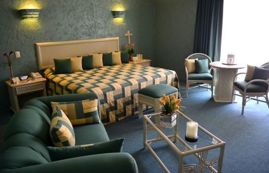 Single room (standard) HOTEL LAYFER