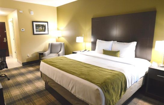Suite Best Western Plus New Orleans Airport Hotel