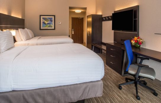 Pokój Holiday Inn Express & Suites TAMPA NORTH - WESLEY CHAPEL
