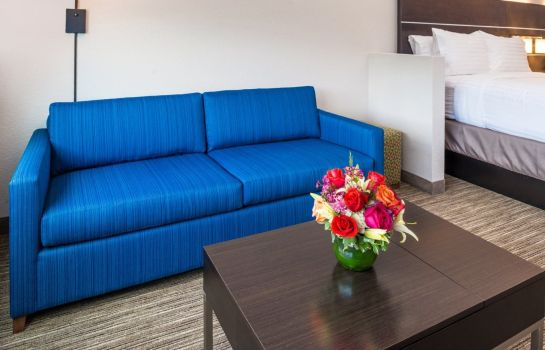 Kamers Holiday Inn Express & Suites TAMPA NORTH - WESLEY CHAPEL