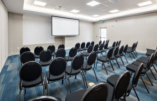 Sala congressi Holiday Inn Express RED DEER NORTH