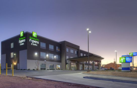 Vista esterna Holiday Inn Express & Suites VAN HORN