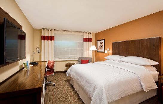 Pokój Four Points by Sheraton Dallas Fort Worth Airport North