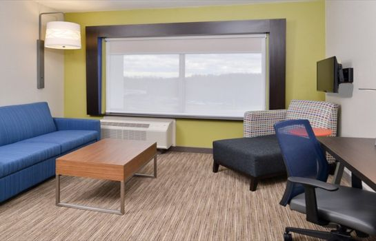 Zimmer Holiday Inn Express & Suites PARKERSBURG EAST