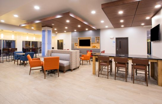 Vestíbulo del hotel Holiday Inn Express & Suites RAPID CITY - RUSHMORE SOUTH