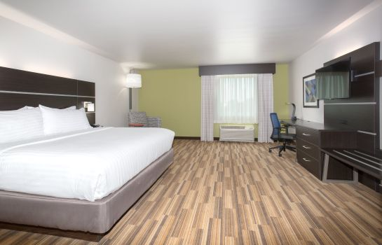 Zimmer Holiday Inn Express & Suites RAPID CITY - RUSHMORE SOUTH