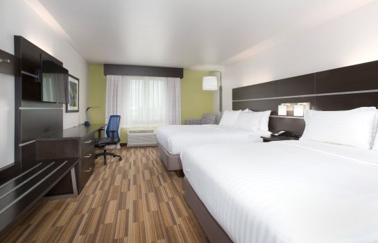 Habitación Holiday Inn Express & Suites RAPID CITY - RUSHMORE SOUTH