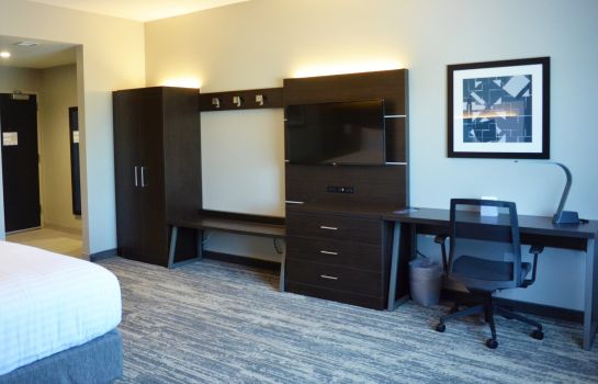 Room Holiday Inn Express & Suites JACKSONVILLE W - I295 AND I10
