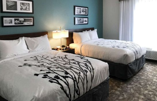 Chambre Sleep Inn & Suites Middletown - Goshen