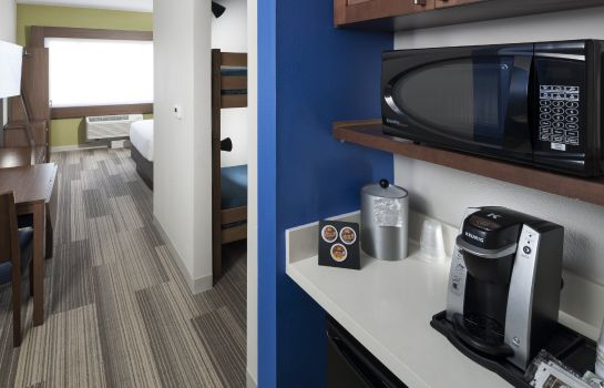 Suite Holiday Inn Express & Suites ORLANDO AT SEAWORLD